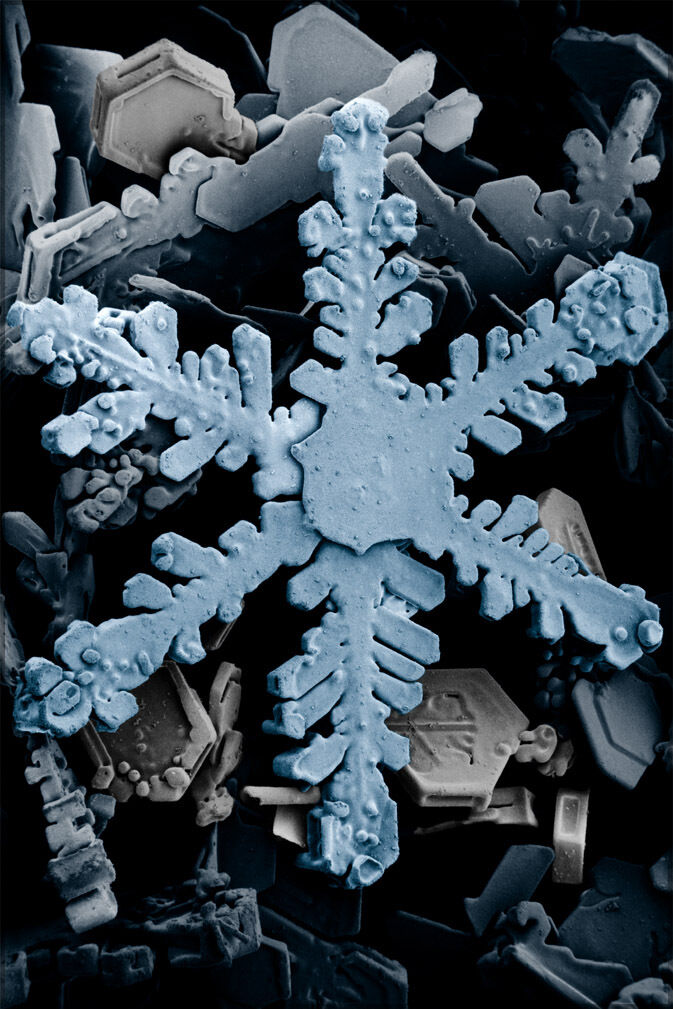 Poster, Many Größes; Snowflake Through Electron Microscope P2