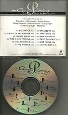 Bill Laswell & Lori Carson GOLDEN PALOMINOS This Is How it feels ADVNCE PROMO CD