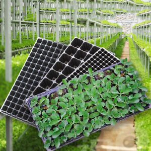 72-105-128-Cell-Seedling-Starter-Tray-Seed-Germination-Plant-Propagat-ESXI