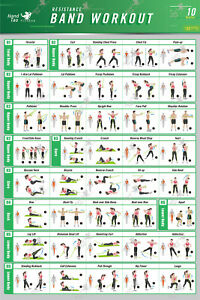 resistance band/tube exercise poster bodybuilding guide