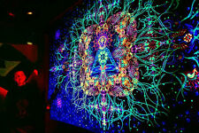 UV Backdrop Reincarnation Psy Deko Wandbehang 1m x 1,5m Hippie Goa Tuch Kunst