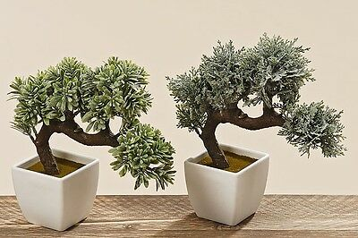 Bonsai im Topf Dekopflanze Kunstpflanze grau H 22 cm grün Kunststoff Kunstbonsai