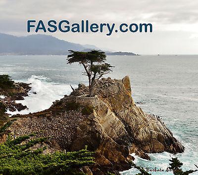 FrameHouse Gallery