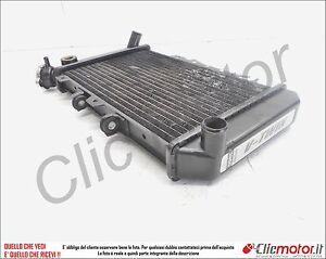 RADIATORE-radiator-original-for-HYOSUNG-GT-650-ANNO-2004-2006