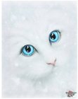 Small Winter Cat Canvas Picture by Linda Jones -cm Wall Plaque 25 X 19