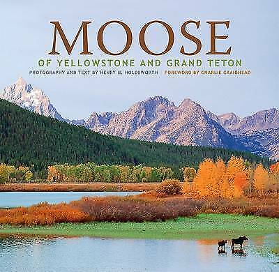 (Very Good)-Moose of Yellowstone and Grand Teton (Hardcover)-Holdsworth, Henry H
