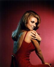 Raquel Welch 8x10 Color Classic Celebrity Photo #80