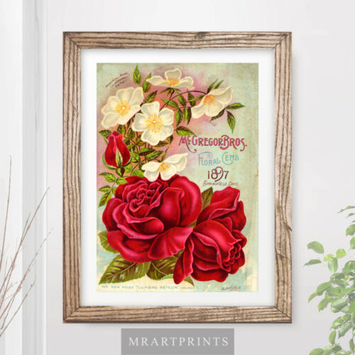VINTAGE FLOWERS Art Print Poster Red Roses Picture Painting Kitchen Nature Plant