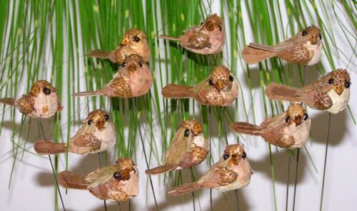 12´er set trendy naturaleza pájaro enchufe 20 cm top para procesar preishit 5430