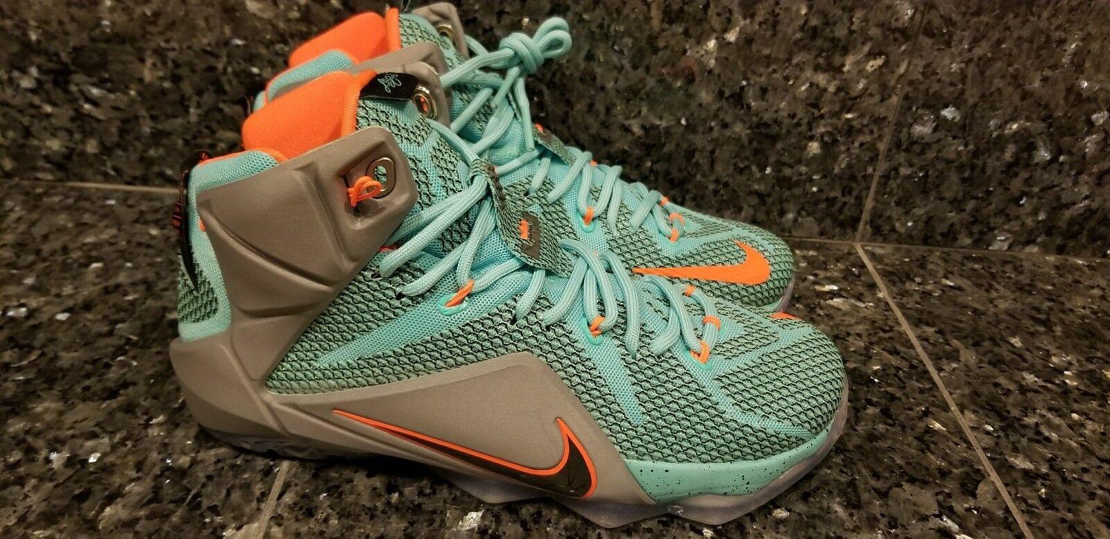 Nike Lebron XII 12 NSRL Miami Dolphins Black Grey Turquoise SZ 8.5 (684593-301)