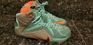 more photos 76d9e 93c01 Image is loading Nike-Lebron-XII-12-NSRL-Miami-Dolphins-Black-
