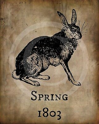Primitive Spring 1803 Bunny Rabbit Hare Easter Picture Print 8x10