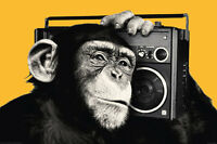 Animal Poster The Chimp Boombox