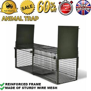 2 Door Large Animal Trap Life Catch Cage Bait Cat Rabbit Raccoon Fox Pet Pigs