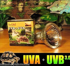 Lampadina lampada faretto spot uva uvb 3 0 e27 rettili for Lampada raggi uvb per tartarughe