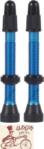 WTB ALUMINUM 34MM TCS BLUE PRESTA VALVE--PAIR