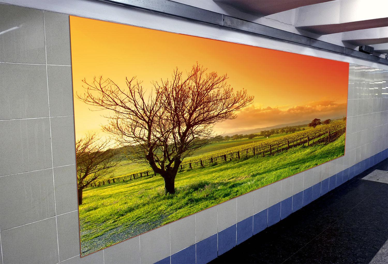 3D Sunset Trees 82 Wallpaper Mural Paper Wall Print Wallpaper Murals UK Lemon