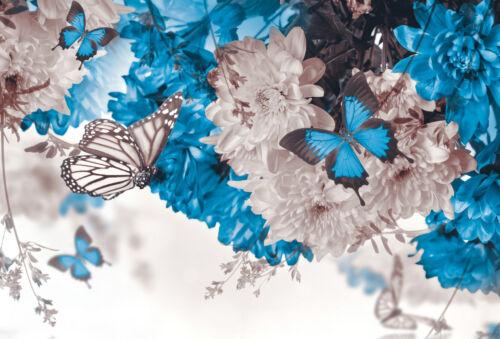 STUNNING ABSTRACT BUTTERFLIES FLOWERS #36 CANVAS PICTURE WALL ART A1