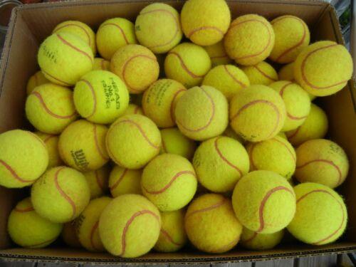 50 gebrauchte Tennisbälle (zu Gunsten der Jugendabteilung)