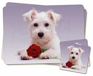 Terrier-Ecossais-avec-Rose-Simple-2x-Set-de-table-2x-Ensemble-De-Sous-verres-en