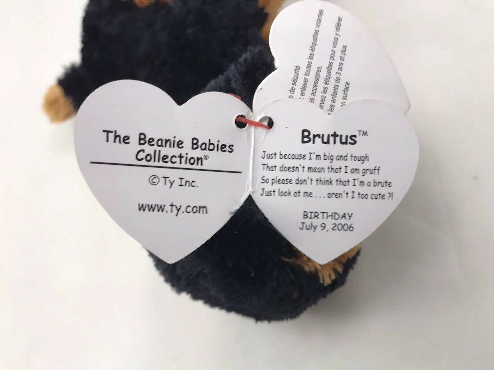 Ty Beanie Baby Babies Brutus The Rottweiler Dog New tag Plush Stuffed Toy  July 9 for sale online  618e1809217c