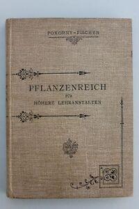 Max-Fischer-Pokornys-Naturgeschichte-des-Pflanzenreiches