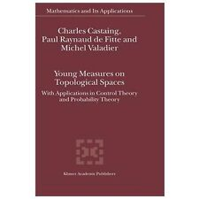 Young Measures on Topological Spaces: With Applications in Control Theory and