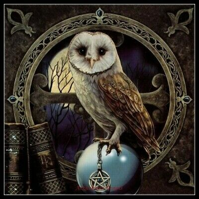 Color Symbols Charts DIY Counted Cross Stitch Patterns Spell Keeper/'s Owl