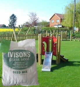 HARD-WEARING-BACK-LAWN-TOUGH-LAWN-GRASS-SEED-PLAY-AREAS-CHILDREN-DOGS-CERTIFIED