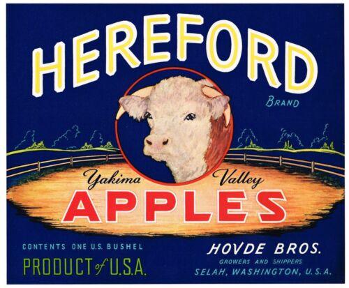 GENUINE APPLE CRATE LABEL VINTAGE LIVESTOCK BULL SELAH 1940 HEREFORD COW STEER