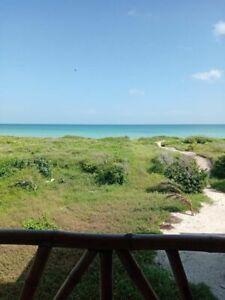 Precioso terreno frente al mar en venta, Sisal, Yucatán, México