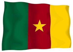 Sticker-decal-vinyl-decals-national-flag-car-cameroon-luggage-ensign-bumper