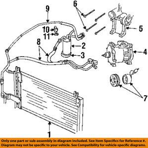 S L on 03 Dodge Durango Heater Hose