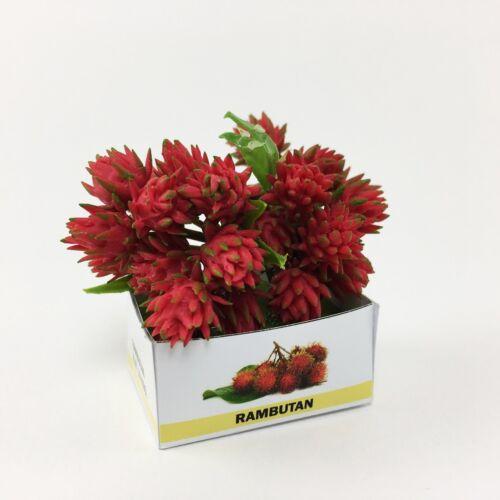 Rambutan in box dollhouse miniature fruit thai clay handmade collection toy prop