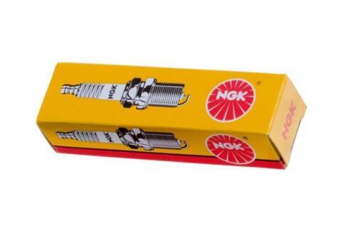 KR Zündkerze Spark Plug NGK CR7HS Rex RS 460 50 4T  16