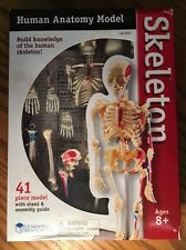 Learning Resources 3337 Human Anatomy Skeleton 41 Piece Model Kit Ages 8+