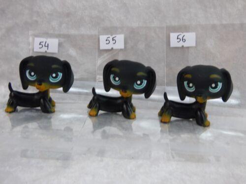 Pet shop,Lttlest petshop LPS chien dog  TECKEL 325