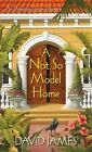 A Not So Model Home by David James (Paperback, 2013)