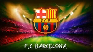 F-C-Barcelona-Canvas-PICTURE-CANVAS-WALL-ART-034-20X30-034