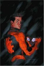 The Amazing Spider-Man: Amazing Spider-Man : Revelations 2 by J. Michael Straczynski (2002, Paperback)