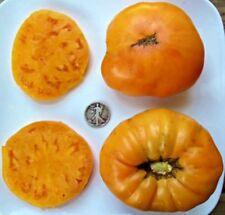 Hawaiian Pineapple - Organic Heirloom Tomato Seed - Awesome Beefsteak - 40 Seeds