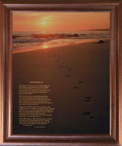 Southwest Cactus Field Sunset Desert Scenic Wall Decor Brown Rust Framed Picture