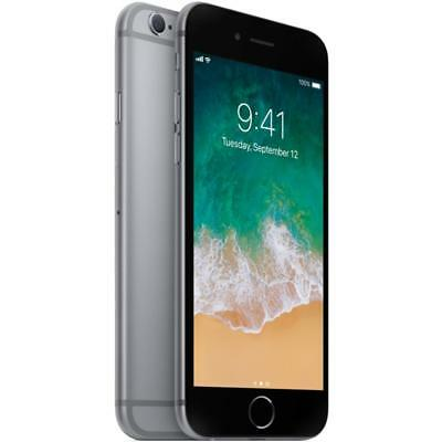 Apple iPhone 6 - 64GB - Gray (Factory GSM Unlocked; AT&T / T-Mobile) Smartphone