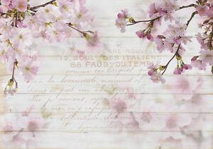 Kirschblüten aus dem Jahr 1974 Wiking fm Dating-Website