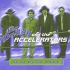 Storm Brewin Outside by Big Daddy & The Accelerators (CD, Feb-2002, The Zone)