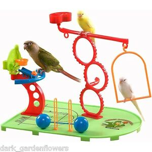 Birdie-Basketball-Gym-Play-Stand-For-Parrots-Budgie-Cockatiel-Love-Bird