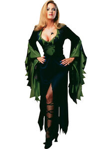 Adult-Ladies-UK-10-14-Spider-Enchantra-Witch-Halloween-Fancy-Dress-Costume-BN