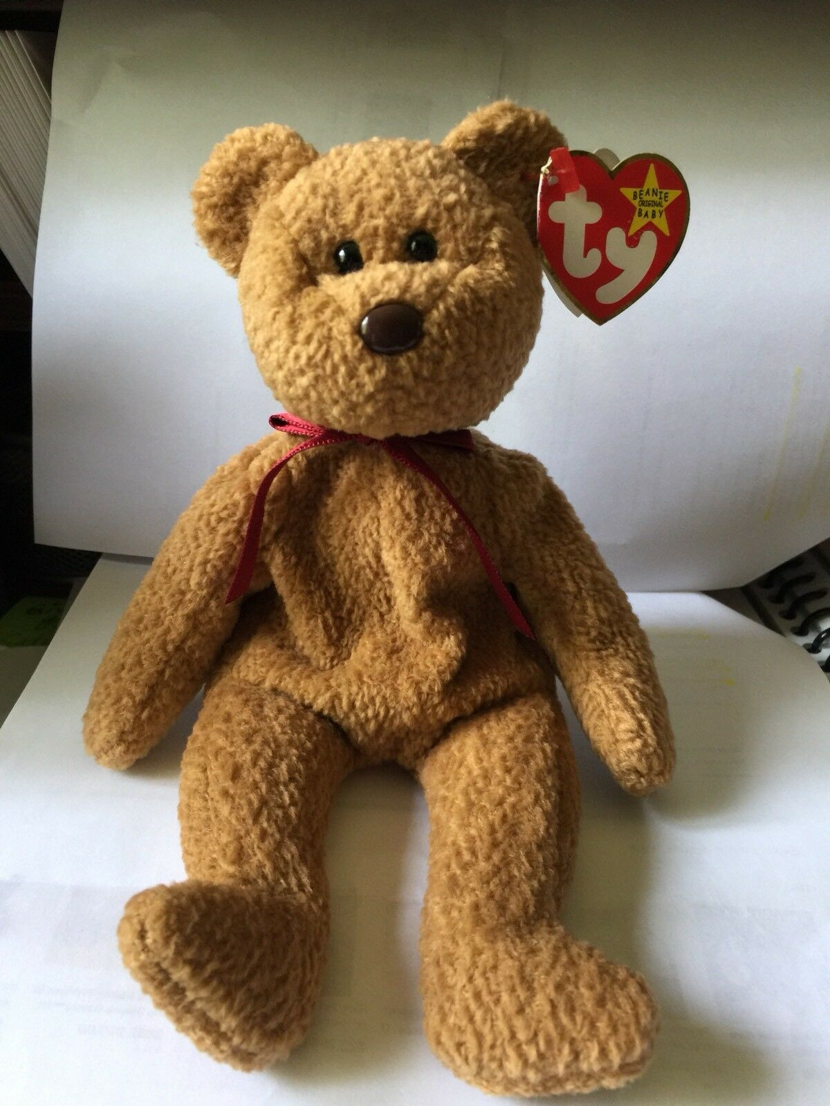 TY Beanie Baby - RETIRED Curly Bear Rare w errors in Excellent Condition