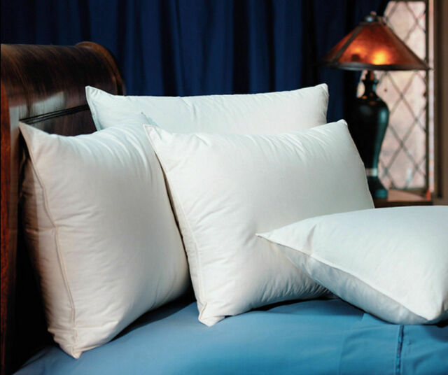 WynRest Gel Fiber Standard Pillow Found at Many Ramada Hotels