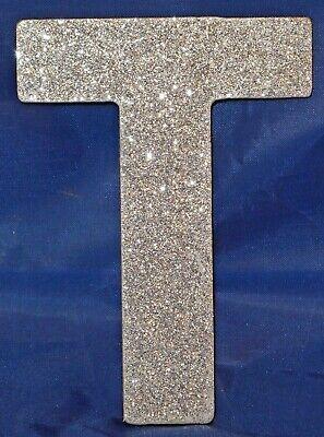 10cm Silver Glittery Letter G